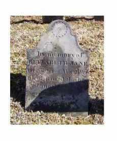ALLEN, ELIZABETH JANE - Adams County, Ohio | ELIZABETH JANE ALLEN - Ohio Gravestone Photos