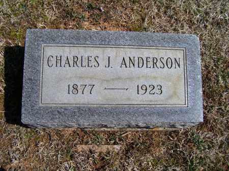 ANDERSON, CHARLES J. - Adams County, Ohio | CHARLES J. ANDERSON - Ohio Gravestone Photos