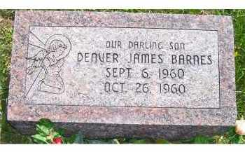 BARNES, DENVER JAMES - Adams County, Ohio | DENVER JAMES BARNES - Ohio Gravestone Photos