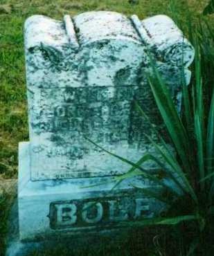 BOLE, MARY - Adams County, Ohio | MARY BOLE - Ohio Gravestone Photos