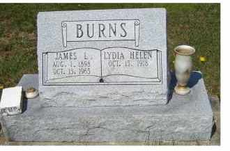 BURNS, LYDIA HELEN - Adams County, Ohio | LYDIA HELEN BURNS - Ohio Gravestone Photos
