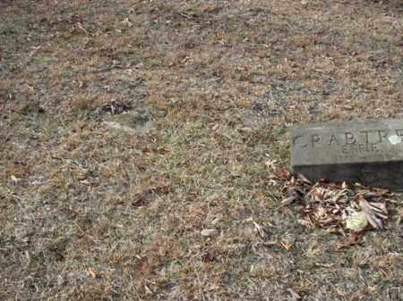 CADWALLADER, JOHN C - Adams County, Ohio | JOHN C CADWALLADER - Ohio Gravestone Photos