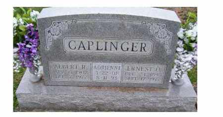CAPLINGER, ALBERT R. - Adams County, Ohio | ALBERT R. CAPLINGER - Ohio Gravestone Photos