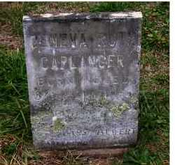 CAPLINGER, GENEVA RUTH - Adams County, Ohio | GENEVA RUTH CAPLINGER - Ohio Gravestone Photos