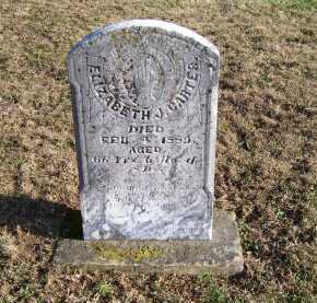 CARTEE, ELIZABETH - Adams County, Ohio | ELIZABETH CARTEE - Ohio Gravestone Photos