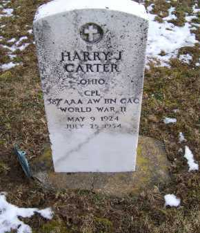 CARTER, HARRY J. - Adams County, Ohio | HARRY J. CARTER - Ohio Gravestone Photos