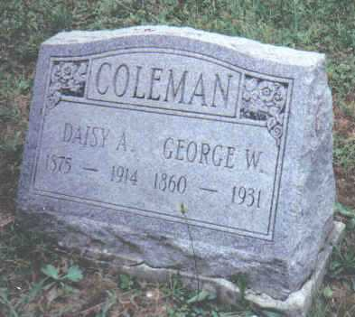 COLEMAN, DAISY A. - Adams County, Ohio | DAISY A. COLEMAN - Ohio Gravestone Photos