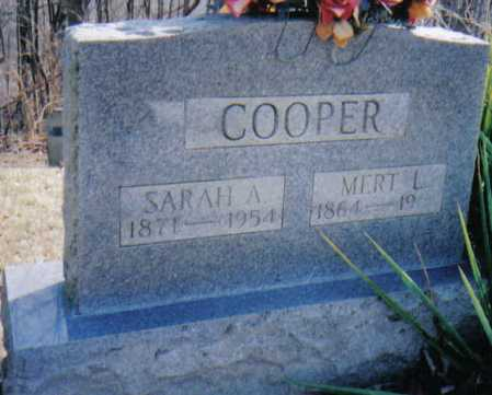 COOPER, SARAH A. - Adams County, Ohio | SARAH A. COOPER - Ohio Gravestone Photos