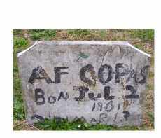 COPAS, A. F. - Adams County, Ohio | A. F. COPAS - Ohio Gravestone Photos