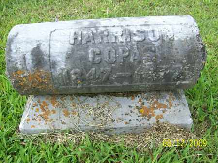 COPAS, WILLIAM HENRY HARRISON - Adams County, Ohio | WILLIAM HENRY HARRISON COPAS - Ohio Gravestone Photos