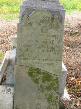 COPELAND, JAMES - Adams County, Ohio   JAMES COPELAND - Ohio Gravestone Photos