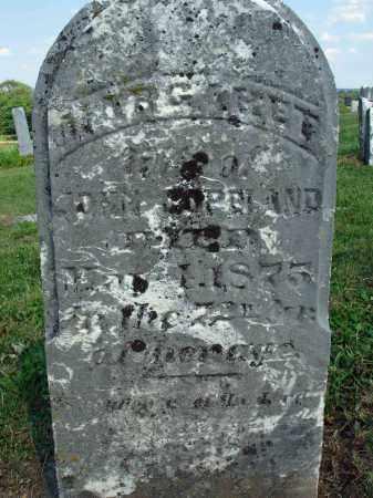 TENER COPELAND, MARGARET - Adams County, Ohio | MARGARET TENER COPELAND - Ohio Gravestone Photos