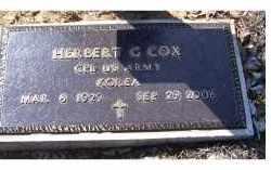 COX, HERBERT G. - Adams County, Ohio | HERBERT G. COX - Ohio Gravestone Photos