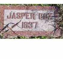 COX, JASPER - Adams County, Ohio | JASPER COX - Ohio Gravestone Photos