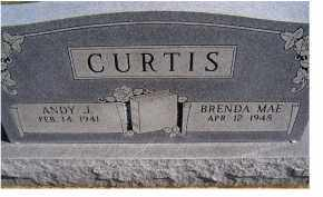 CURTIS, BRENDA MAE - Adams County, Ohio | BRENDA MAE CURTIS - Ohio Gravestone Photos