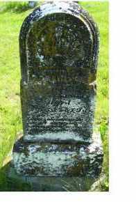 DARLINTON, JOHN M. - Adams County, Ohio   JOHN M. DARLINTON - Ohio Gravestone Photos