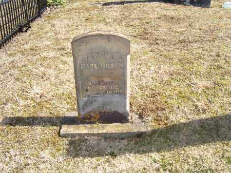 DARLNGTON, N. W. - Adams County, Ohio | N. W. DARLNGTON - Ohio Gravestone Photos