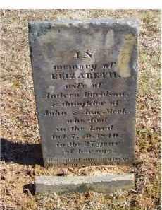 DAVIDSON, ELIZABETH - Adams County, Ohio | ELIZABETH DAVIDSON - Ohio Gravestone Photos