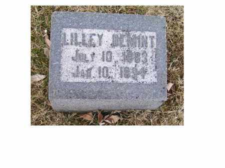 DEMINT, LILLEY - Adams County, Ohio | LILLEY DEMINT - Ohio Gravestone Photos