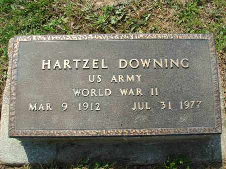 DOWNING, HARTZEL - Adams County, Ohio | HARTZEL DOWNING - Ohio Gravestone Photos