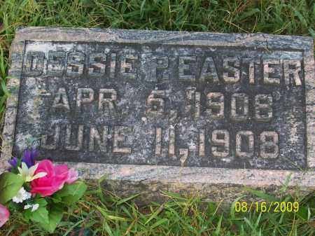 EASTER, DESSIE P - Adams County, Ohio | DESSIE P EASTER - Ohio Gravestone Photos
