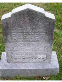 EASTER, HENRY F. - Adams County, Ohio | HENRY F. EASTER - Ohio Gravestone Photos