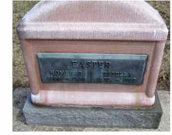 EASTER, HOMER P. - Adams County, Ohio | HOMER P. EASTER - Ohio Gravestone Photos