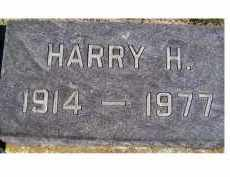 ELLIS, HARRY H. - Adams County, Ohio | HARRY H. ELLIS - Ohio Gravestone Photos