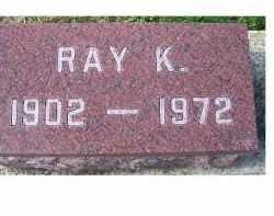 ELLIS, RAY K. - Adams County, Ohio | RAY K. ELLIS - Ohio Gravestone Photos