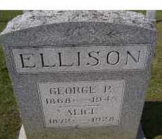 ELLISON, GEORGE P. - Adams County, Ohio | GEORGE P. ELLISON - Ohio Gravestone Photos