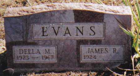 EVANS, DELLA M. - Adams County, Ohio | DELLA M. EVANS - Ohio Gravestone Photos