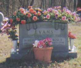 EVANS, ROBERT - Adams County, Ohio | ROBERT EVANS - Ohio Gravestone Photos