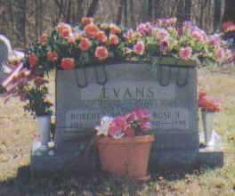 EVANS, ROSA - Adams County, Ohio | ROSA EVANS - Ohio Gravestone Photos