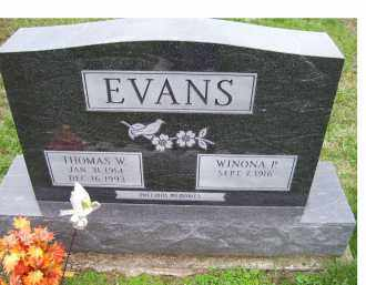 EVANS, THOMAS W. - Adams County, Ohio | THOMAS W. EVANS - Ohio Gravestone Photos