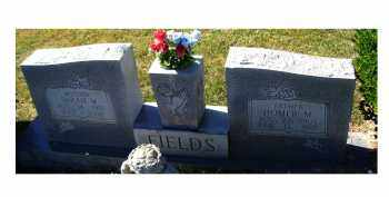 FIELDS, SARAH W. - Adams County, Ohio | SARAH W. FIELDS - Ohio Gravestone Photos