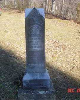 FORSYTHE, WILLIAM CALVIN - Adams County, Ohio | WILLIAM CALVIN FORSYTHE - Ohio Gravestone Photos
