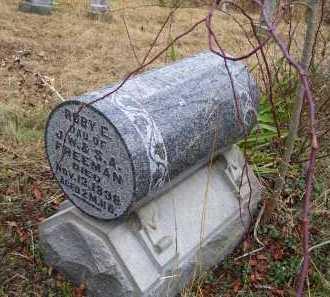 FREEMAN, RUBY E. - Adams County, Ohio | RUBY E. FREEMAN - Ohio Gravestone Photos
