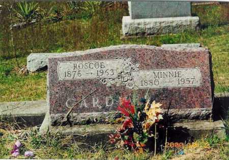 MINNIE, PEARL - Adams County, Ohio | PEARL MINNIE - Ohio Gravestone Photos
