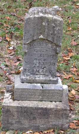 GARDNER, DORSEY C. - Adams County, Ohio | DORSEY C. GARDNER - Ohio Gravestone Photos