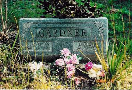 GARDNER, DAVID - Adams County, Ohio | DAVID GARDNER - Ohio Gravestone Photos