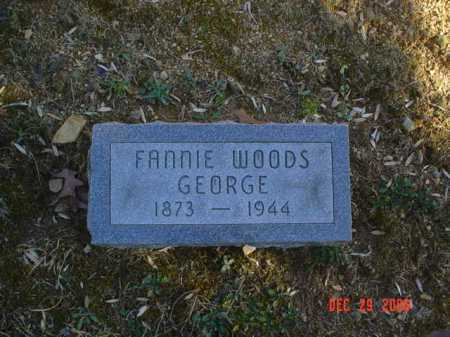 WOODS GEORGE, FANNIE - Adams County, Ohio | FANNIE WOODS GEORGE - Ohio Gravestone Photos