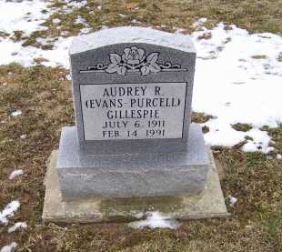EVANS - PURCELL GILLESPIE, AUDREY R. - Adams County, Ohio | AUDREY R. EVANS - PURCELL GILLESPIE - Ohio Gravestone Photos