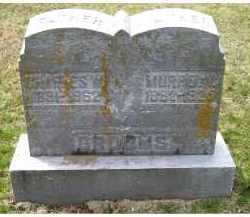 GROOMS, MURREL V. - Adams County, Ohio | MURREL V. GROOMS - Ohio Gravestone Photos