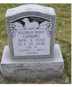 GROOMS, RONALD DALE - Adams County, Ohio | RONALD DALE GROOMS - Ohio Gravestone Photos