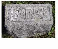 HAHN, HARRY - Adams County, Ohio | HARRY HAHN - Ohio Gravestone Photos