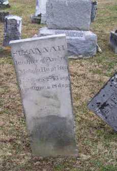 HAMITON, SUSANNAH - Adams County, Ohio | SUSANNAH HAMITON - Ohio Gravestone Photos