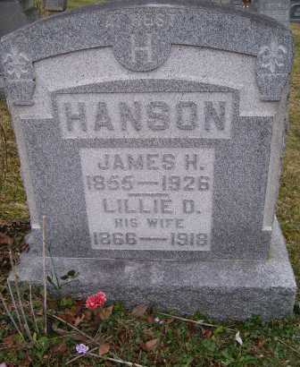 HANSON, LILLIE O. - Adams County, Ohio | LILLIE O. HANSON - Ohio Gravestone Photos