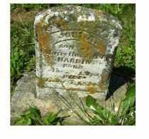 HARDIN, JOEL A. - Adams County, Ohio   JOEL A. HARDIN - Ohio Gravestone Photos