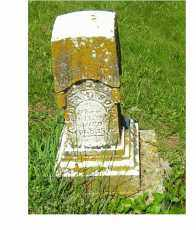 HELMLEY, INFANT - Adams County, Ohio | INFANT HELMLEY - Ohio Gravestone Photos