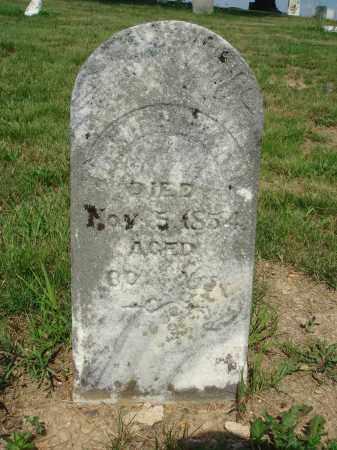 HERDMAN, HENRY - Adams County, Ohio | HENRY HERDMAN - Ohio Gravestone Photos